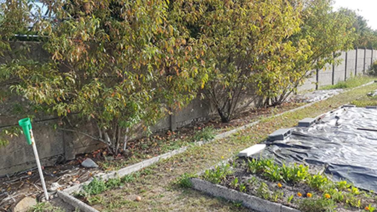 Jardin Bichat 3