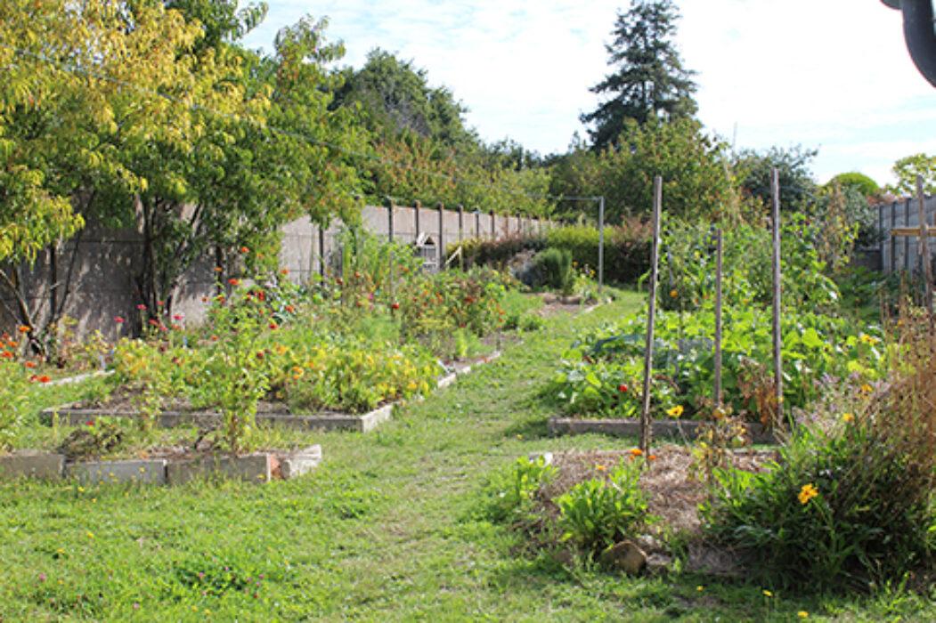 jardin bichat 1